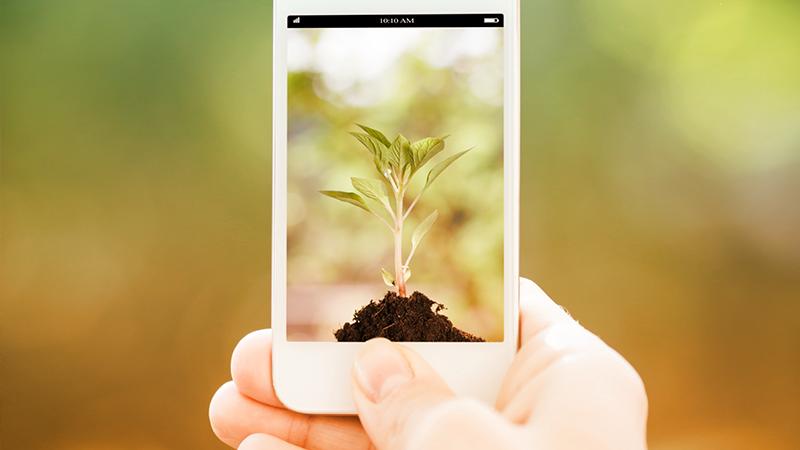 Green app per una vita sempre più ecosostenibile