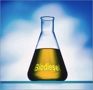 Biodiesel: l'energia verde che aiuta l'ambiente
