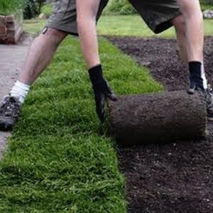 Giardini eco(tecno)logici