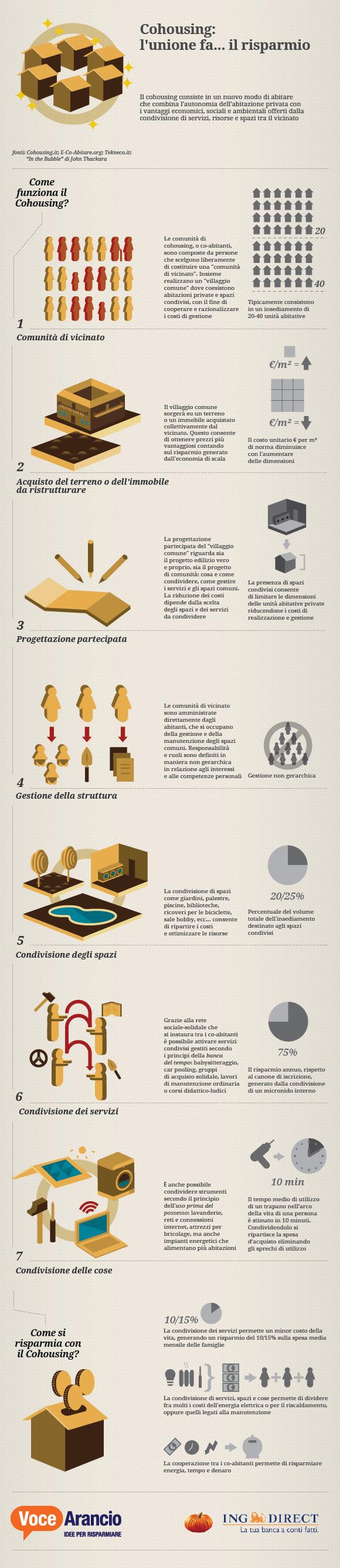 info8.jpg