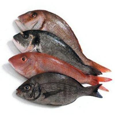 Non sai più che pesci prendere?
