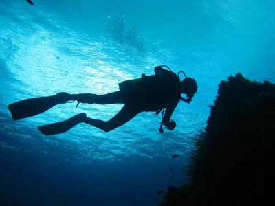 Alla scoperta del mondo sommerso