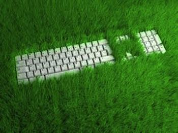 Un ufficio verde per respirare meglio e spendere meno