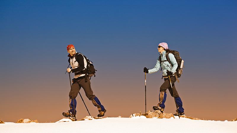 1. Pianificare le escursioni con la giusta consulenza