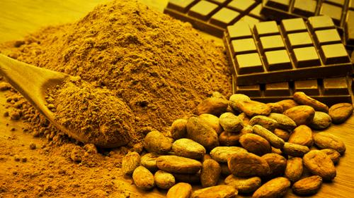 Expo 2015, Cluster cacao e cioccolato: tutto quello che c'è da sapere