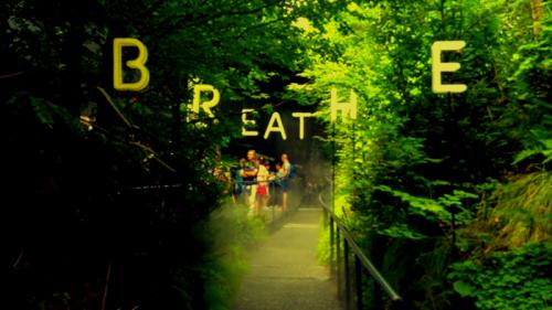 """""""Breathe"""": l'Austria porta le Alpi dentro Expo"""