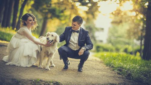 5 consigli per un viaggio di nozze low cost