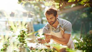 Contratti di lavoro occasionale: tutte le novità