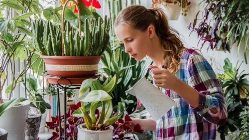 Garden therapy, una passione da coltivare