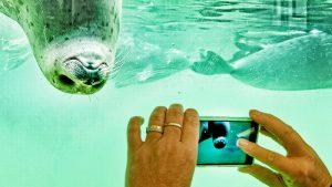 Tecnologia disecondamano? Quando conviene e come evitare rischi