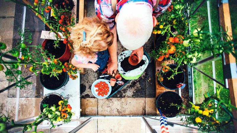 Crea il tuo orto urbano sul terrazzo o sul balcone
