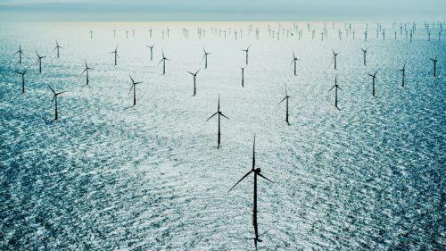 Le big tech pensano in grande sulle energie rinnovabili